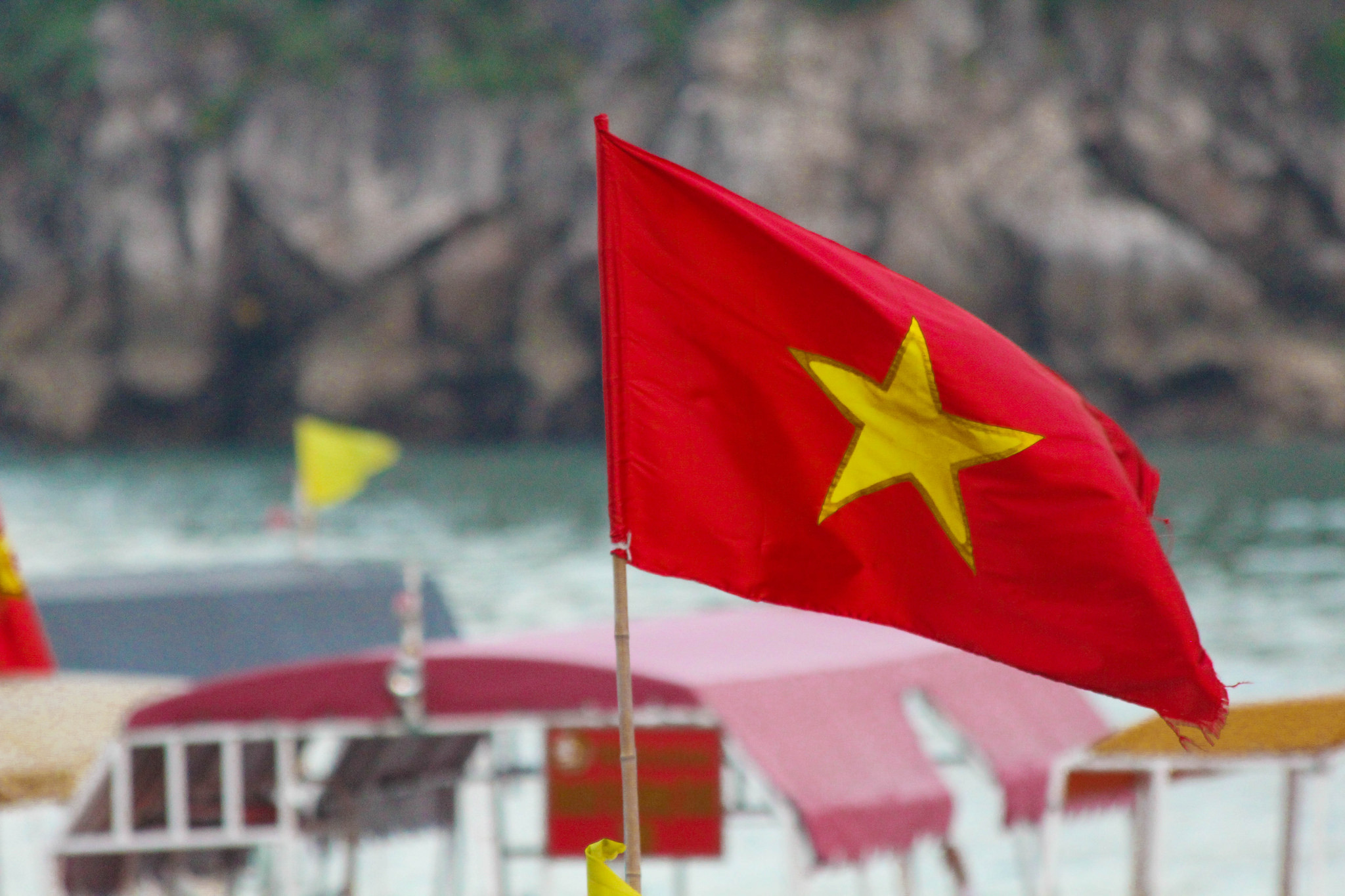 the-vietnamese-flag