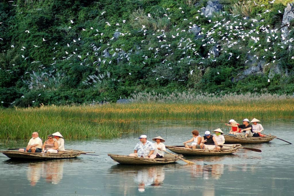 van-long-nature-reserve-best-time