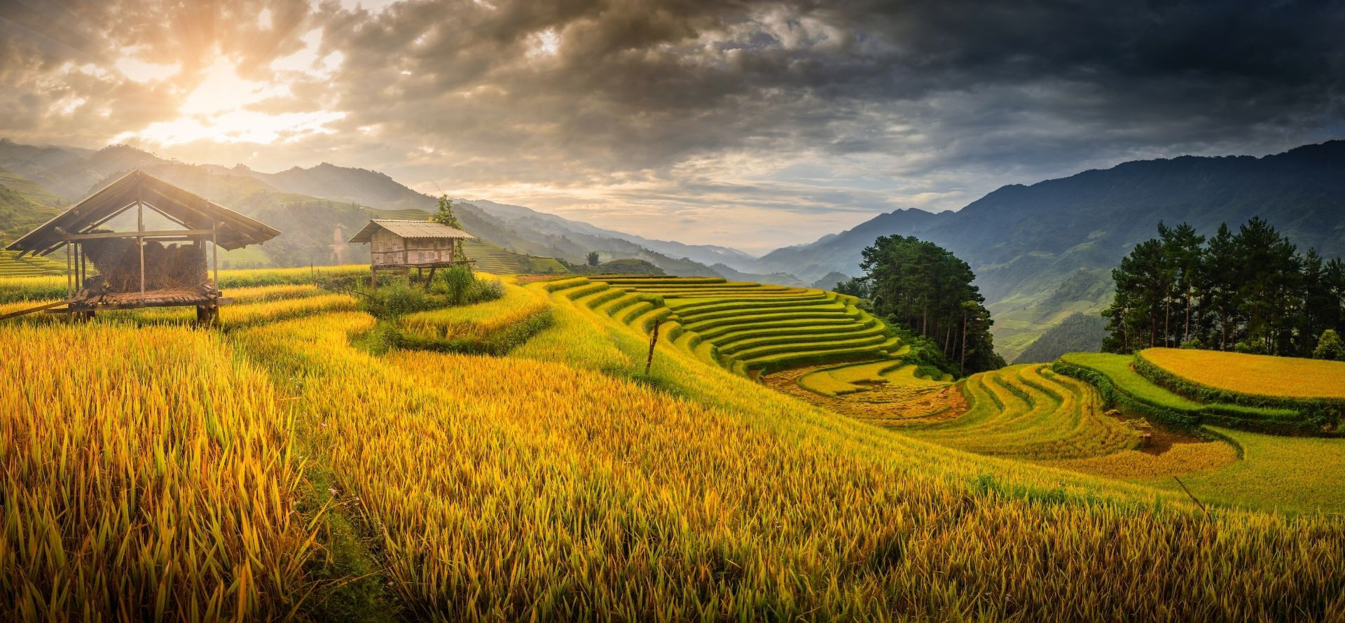vietnam-travel-banner