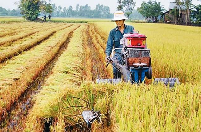 Các hoạt động nông nghiệp không an toàn