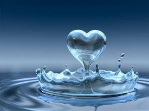 Tại sao không dùng nước cất để pha loãng mẫu?