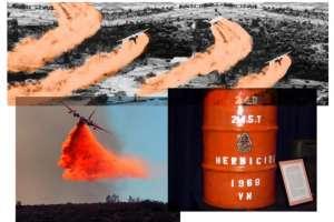 Chất độc màu da cam - Hậu quả nghiêm trọng mà thế hệ sau phải gánh chịu