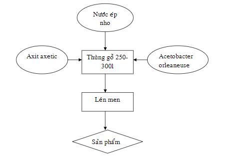 Điều chế axit axetic từ nước nho