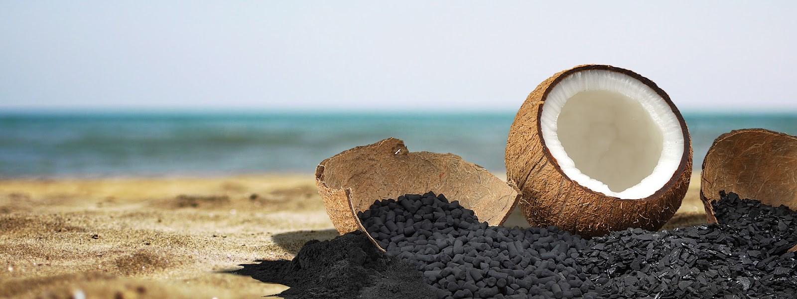 Gáo dừa là nguyên liệu chính để sản xuất than hoạt tính ở nước ta
