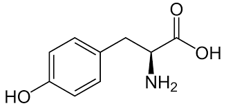 L-Tyrosine for biochemistry 10kg Merck