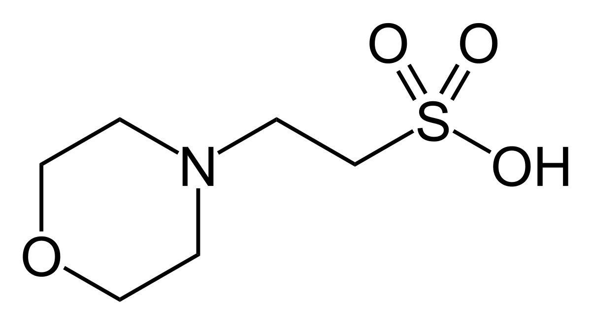 2-Morpholinoethanesulfonic acid monohydrate buffer substance MES 250g Merck