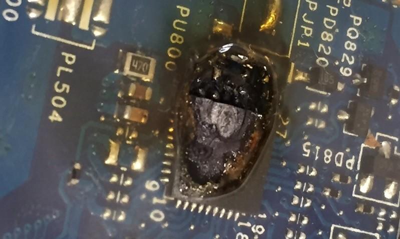Kiến chui vào làm tổ gây thiệt hại, hư hỏng cho các linh kiện bên trong máy