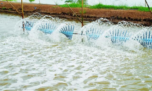 EDTA khử trùng nguồn nước và làm mềm nước