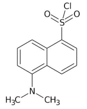 5-Dimethylaminonaphthalene-1-sulfonyl chloride for biochemistry 10g Merck