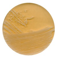 Tryptic soy agar with polysorbate 80 and lecithin for microbiology Merck