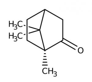L(-)-Camphor, 98%, 10g,Acros
