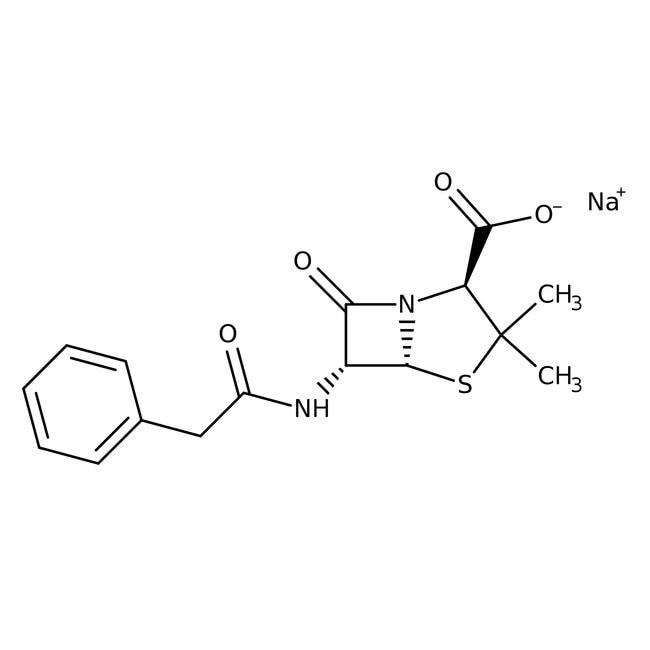 Penicillin-G sodium salt, from Penicillium fungi 5g Bioreagents