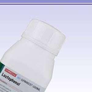 Lactophenol GRM8537-500ML Himedia