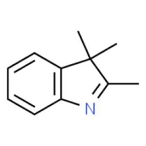 2,3,3-Trimethylindolenine, 98% 25g Acros