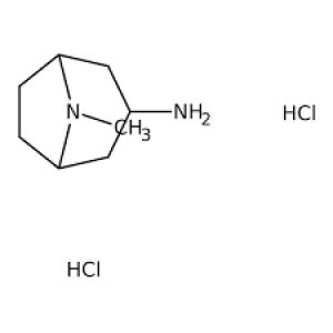 8-Methyl-8-azabicyclo[3.2.1]octan-3-amine dihydrochloride, 90% 1g Maybridge