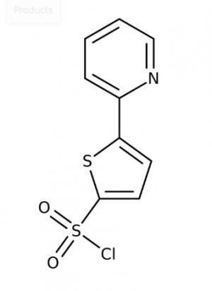 5-(2-Pyridyl)thiophene-2-sulfonyl chloride, 95% 1g Maybridge
