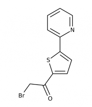 2-Bromo-1-[5-(2-pyridinyl)-2-thienyl]-1-ethanone, 90% 1g Maybridge