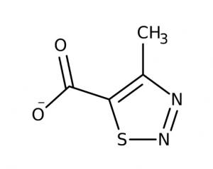 4-Methyl-1,2,3-thiadiazole-5-carboxylic acid, 97% 1g Maybridge