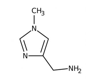 (1-Methyl-1H-imidazol-4-yl)methylamine, 95% 1g Maybridge