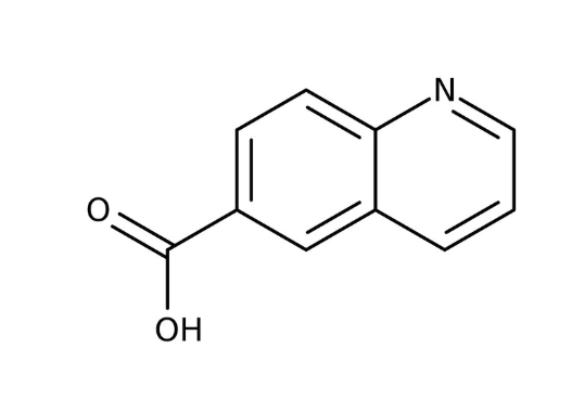 Quinoline-6-carboxylic acid, 97% 1g Maybridge