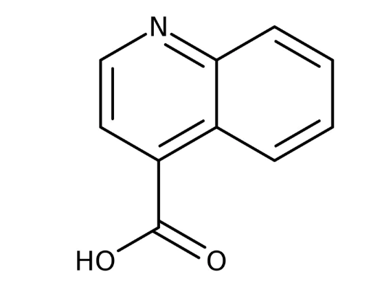 Quinoline-4-carboxylic acid, 97% 5g Maybridge