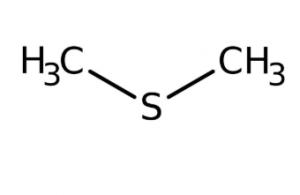 Methyl sulfide 99+% extra pure, 1l Acros