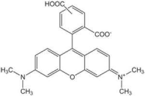 5(6)-Carboxytetramethylrhodamine Novabiochem® 500mg Merck