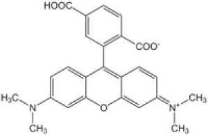 6-Carboxy-tetramethylrhodamine Novabiochem® 50mg Merck