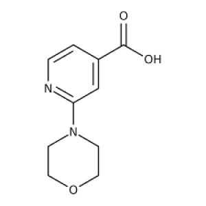 2-Morpholinoisonicotinic acid, 97% 250mg Maybridge