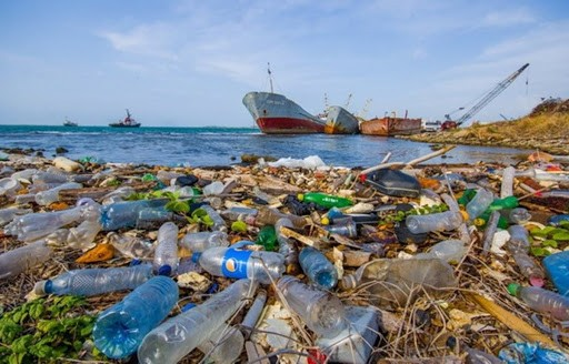 Ảnh hưởng của rác thải nhựa đến sức khoẻ con người