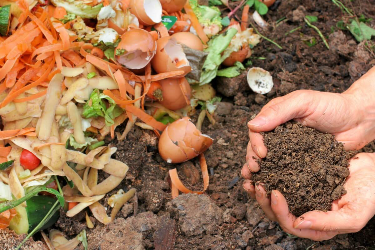 Chế phẩm EM giúp phân hủy các chất hữu cơ