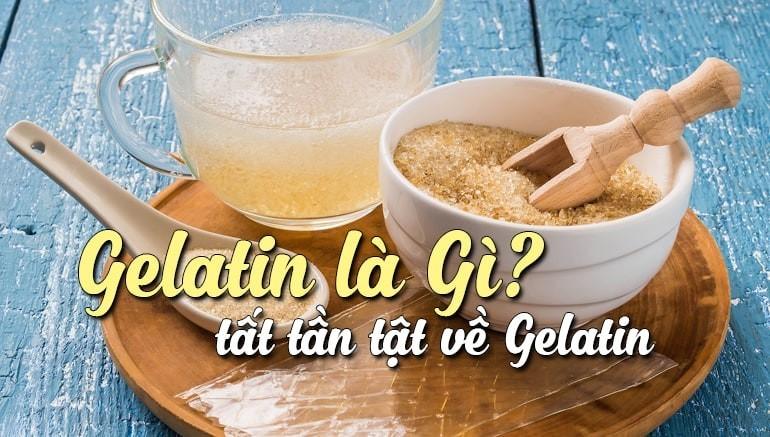 Gelatin là gì?