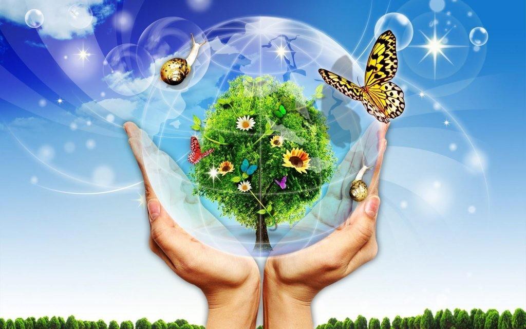 Giải pháp khắc phục tình trạng ô nhiễm môi trường đất