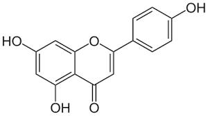 Apigenin 20mg ChemFaces