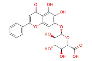 Baicalin 20mg ChemFaces