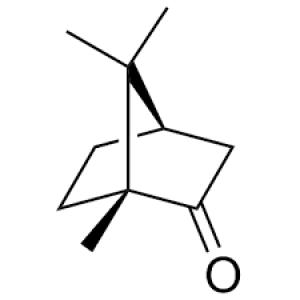 (+)-Camphor 20mg ChemFaces