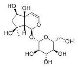 Harpagide 20mg ChemFaces