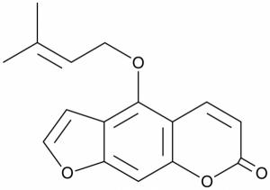 Isoimperatorin 20mg ChemFaces