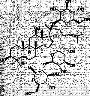 Notoginsenoside R1 20mg ChemFaces