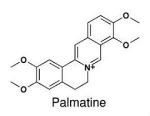 Palmatine 20mg ChemFaces