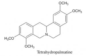 Rotundine 20mg ChemFaces