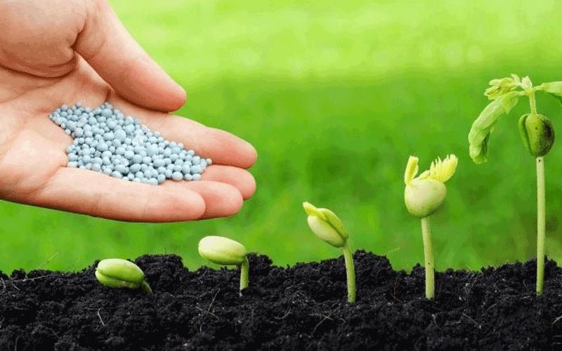 Ứng dụng quan trọng của Potassium carbonate trong sản xuất phân bón