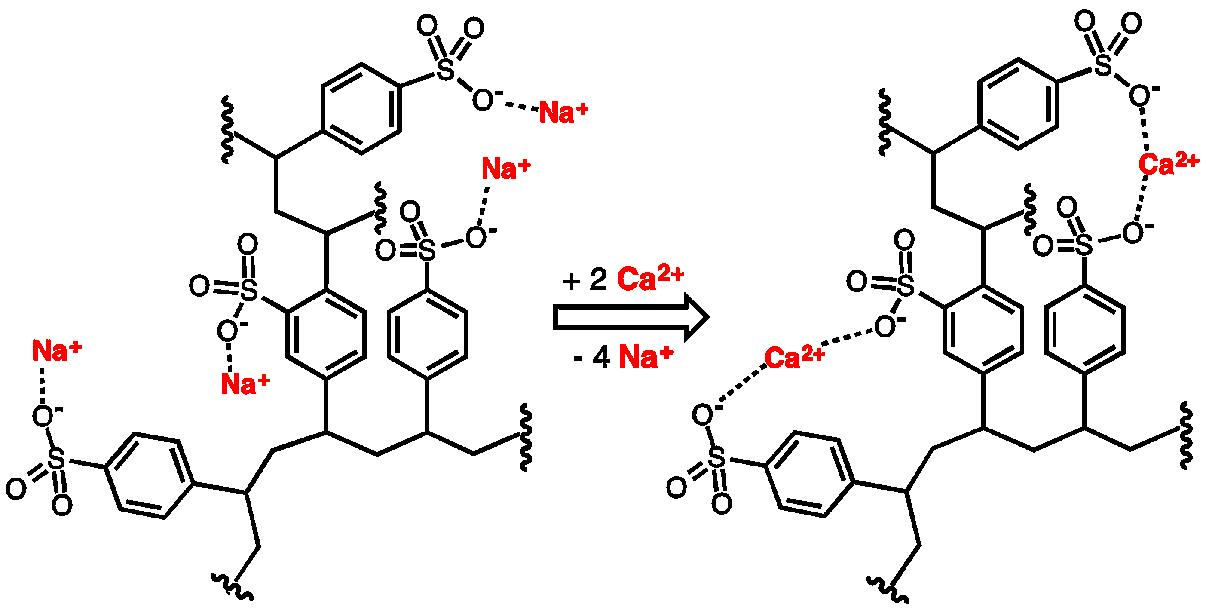 Quá trình trao đổi của hạt cation