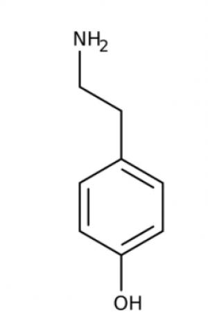 Tyramine, 97% 5g Acros