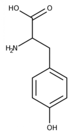 L-Tyrosine, 99+% 5g Acros