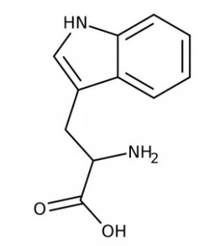 L(-)-Tryptophan, 99% 1kg Acros
