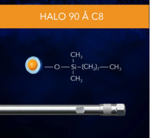 HALO 90 Å C8, 5 µm, 4.6 x 150 mm HPLC Column