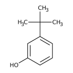 3-tert-Butylphenol, 99+% 1g Acros