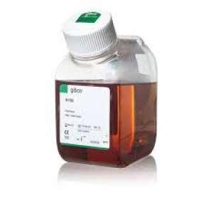 Fetal Bovine Serum, qualified, heat inactivated, United States 500ml Gibco
