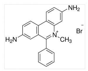 Dimidium bromide 1g Sigma